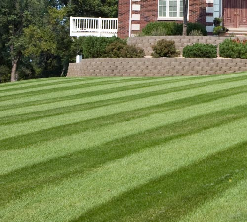 Contact Info For Myers Lawn Care, (330) 703-6909